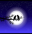 silhouette a couple bird vector image vector image