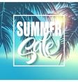Summer sale lettering on blue background vector image vector image