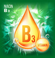 vitamin b3 niacin gold oil drop icon vector image vector image