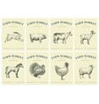 labels with farm animals set templates price tags vector image