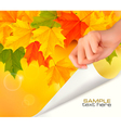 autumn background with hand vector image