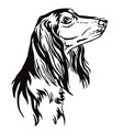 decorative portrait of saluki dog vector image vector image