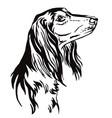 decorative portrait saluki dog vector image vector image