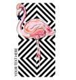 flamingo pink modern bird vector image vector image
