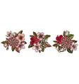 flower bouquet colored hibiscus plum flowers vector image