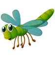 green dragonfly flying on white background vector image vector image