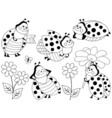Ladybugs Set vector image vector image