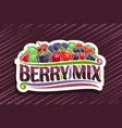 logo for berry mix vector image vector image