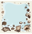 Summer Frame of seashells vector image vector image