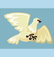 white dove flying with spread wings domestic farm vector image vector image
