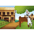 Zebra in the western old town vector image vector image