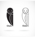 an owls design on white background bird icon wild vector image