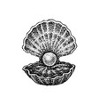 dotwork shell with pearl vector image vector image