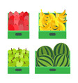 fruit market with banana and watermelon boxes vector image vector image