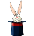 rabbit in the hat vector image vector image