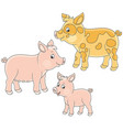 small pink piglet pig and hog vector image