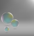 soap bubbles on grayscale vector image