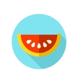 Watermelon Slice flat icon with long shadow vector image