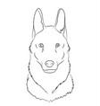 wolf portrait lines vector image vector image