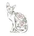 cat sphynx vector image