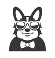 Welsh Corgi Pembroke wit Bowtie and Sunglasses vector image