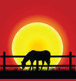 horse silhouette in nature vector image vector image