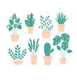 houseplant in pot flowerpot set home plant vector image vector image