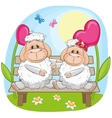 Lovers Sheep vector image vector image