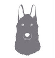 portrait of a gray wolf silhouette vector image