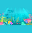 underwater background with sea flora vector image