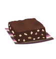 Chocolate brownie cake with nuts vector image