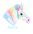 colorful portrait zebra vector image vector image