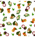 exotic tropical fruit vector image