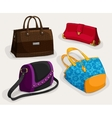 Fashion womans bags collection vector image vector image