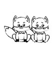 figure cute couple fox wild animal with beautiful vector image vector image