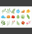 flat set of tropical plants exotic flowers vector image