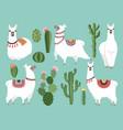 funny llama animal in vector image vector image