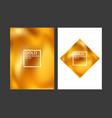 gold covers vector image