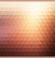 muted colours low poly background vector image vector image