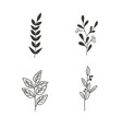nature leaf plant vector image vector image