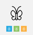 of zoology symbol on moth vector image