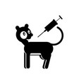 vaccination cat contour vector image vector image