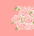 background or card with pink roses vector image
