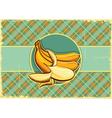 Bananas label Vintage fruits vector image vector image
