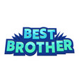 best brother banner with typography vector image