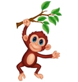 Cute monkey cartoon hanging vector image vector image
