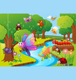 different insects flying over the river vector image