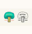green tree logo vegetarian concept organic vegan vector image vector image