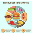 Hamburger sandwich infographic vector image