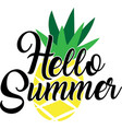 hello summer on white background vector image vector image